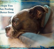 Hope You Are Feeling Better Soon by Susan Werby