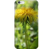 Dandelion - 2011 iPhone Case/Skin