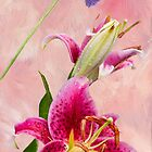 Stargazer Lily and Pin Cushion Flower by Diane Schuster