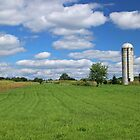 Rural Wanderings  by Jack Ryan