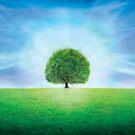 Dream Tree by Cliff Vestergaard