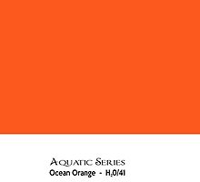 Aquatic Series - Ocean Orange by txjeepguy2