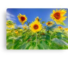 Happiness Shines Through Canvas Print