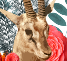 Beauty Antilope Sticker