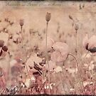 vintage poppy field by artsandsoul
