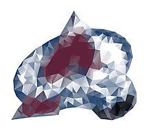 Colorado Avalance Triangles Photographic Print