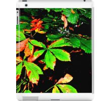 Autumn's Here iPad Case/Skin