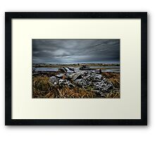 The Old Log Framed Print