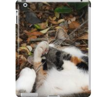 Playing in the leaf litter iPad Case/Skin
