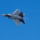 Reno Air Races 2014 - Afterburner by rrushton