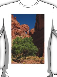 The Tree and the Window T-Shirt