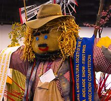 Winning scarecrow by indiafrank