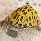 Goggo/Insect range - Leopard Tortoise by Maree  Clarkson