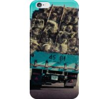 The journey iPhone Case/Skin