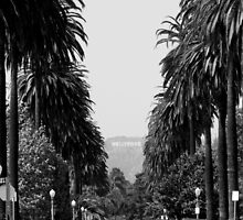 HOLLYWOOD SIGN IN BLACK & WHITE by brightspace