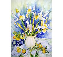 Dutch Iris with Cumquats Photographic Print