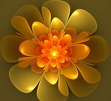 Orange Flower by James Brotherton