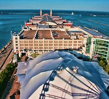 Navy Pier Chicago by Marija