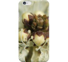 Buds in cradle iPhone Case/Skin