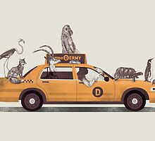 1-800-TAXI-DERMY by Jacques Maes