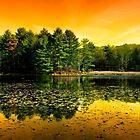 Orange Sunrise Reflection Landscape by Christina Rollo