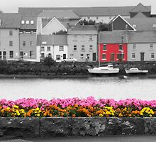 View of Galway Harbour by Mark Bangert