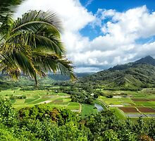 Nature scenery in Hanalei, Kauai by Julia  Hiebaum