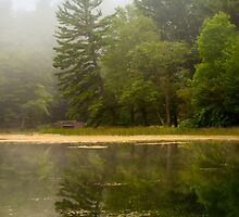 Foggy Morning Reflection Landscape by Christina Rollo