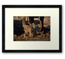 Baby's first mudbath Framed Print