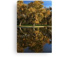 Bidwell Park Reflections Canvas Print