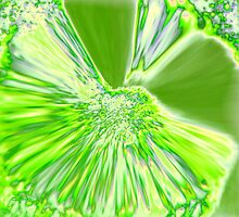 LIME EXPLOSION by tlynnbrentnall