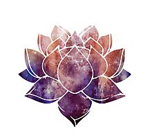Buddhist Lotus Flower Photographic Print
