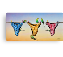 Budgie Smugglers Canvas Print