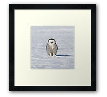 This is MY field Framed Print