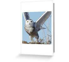 Clear objective Greeting Card