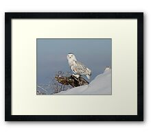 Upon her lookout Framed Print