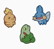 Pokémon / Gen 3 Starters by valione