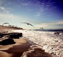 Morning Flight by Brandon Colbert