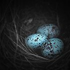 Nest of 3 by Trish Mistric