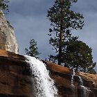 Vernal Falls by Loree McComb