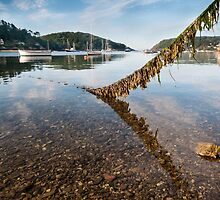 Salcombe Harbour Moorings by Simon Finch