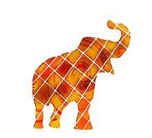 Orange Elephant by mreedd
