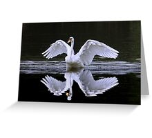 Swan and Reflection ... Two for One Greeting Card