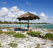 Old Thatched Sun Shade Caribbean Sea Mexico by John Keates