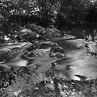 A mountain stream by Paul Pasco