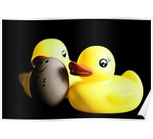 Two Rubber Duckies and One Egg Poster