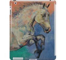 Graceful Jets iPad Case/Skin