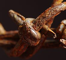 Rusty Wire by Jodie Kelley