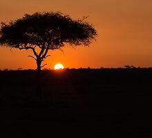 Sunset on the Mara by noeldolan
