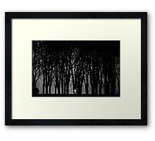 Edward Snowden in the woods Framed Print